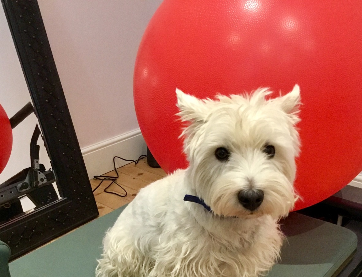 Jacques with exercise ball